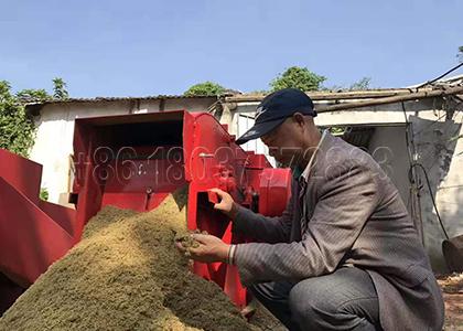 Dairy Manure Powder after Crushing