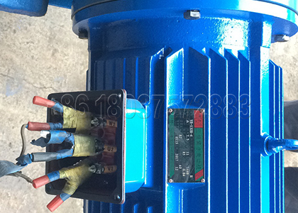 Elector Motor Equiped on Dewatering Machine