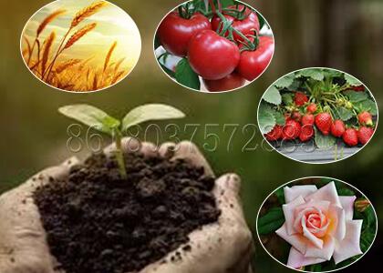 The Usage of Pig Mnaure Fertilizer